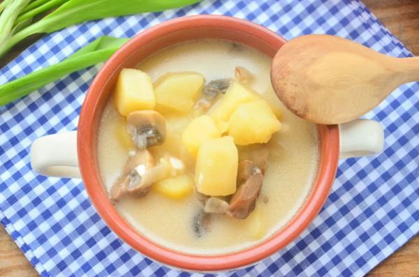 Суп на курином бульоне с грибами и сыром