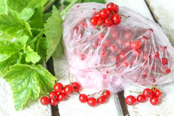 Как заморозить красную смородину на зиму