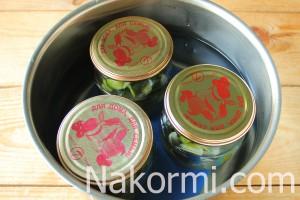 salat-iz-ogurcov-damskie-palchiki-na-zimu8