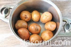 otvarnoj-kartofel-v-soli3